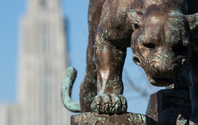 Panther Statute