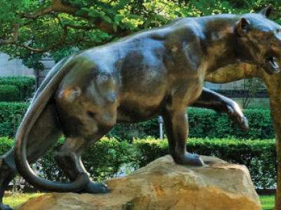 Pitt panther statute